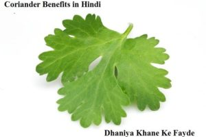 coriander benefits in hindi dhaniya