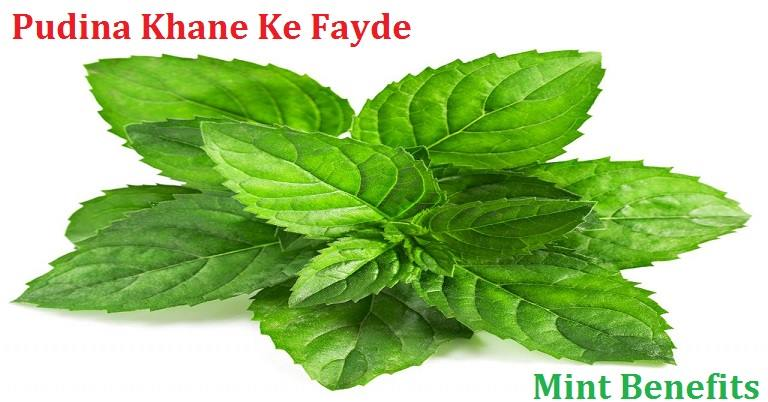 mint benefits in hindi pudina ke fayde