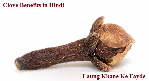 clove benefits in hindi laung