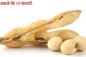 soybean ke fayde, soybean benefits in hindi