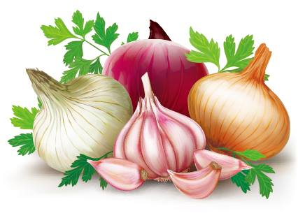why onion and garlic is not eaten in hindi, why brahmins don't eat onion and garlic in hindi