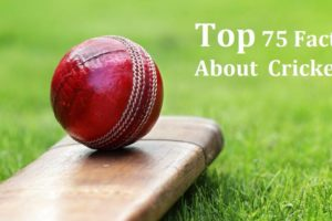 interesting facts about cricket in hindi