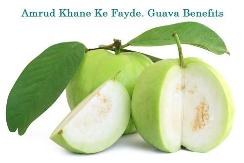 guava benefits in hindi amrud ke fayde